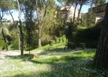 RIF.281 Lazio, Roma-Appartamento in vendita Via della Camilluccia